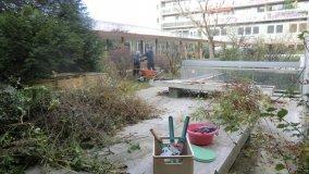 2015-11-20-Jardinage-02