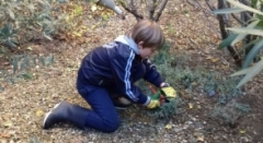 Jeune jardinier amateur