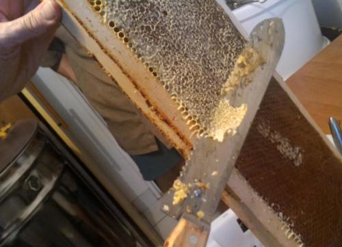 Retrait de la pellicule de cire pour favoriser l'écoulement du miel